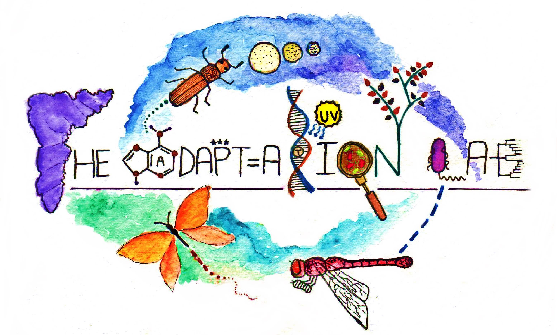Adaptationlab_small